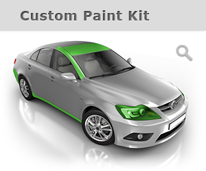 Standard Paint Protection Kit